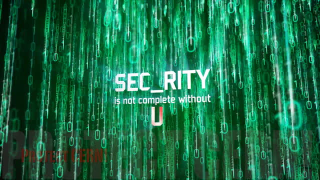 Security Is Not Complete Without U Cern Document Server